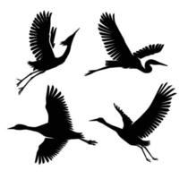 Heron and Stork Bird Silhouettes collection vector