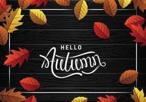 Hello Autumn Leaves And Black Woods Background vector
