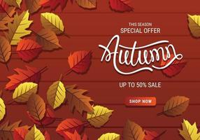Special Offer Autumn Sale Banner With Leaves And Brown Background vector
