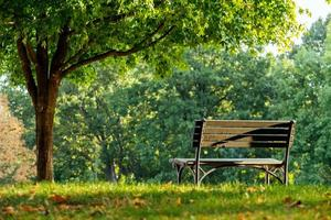 un banco en el parque. foto