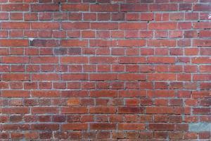 Grunge red brick wall texture. photo