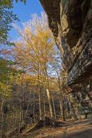 colores de otoño que se asoman desde un espectacular saliente foto