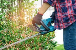 Jardinero sosteniendo un cortasetos eléctrico para cortar la copa del árbol foto