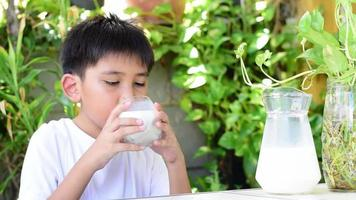 Asian boy in a white T-shirt is drinking a glass of milk. video
