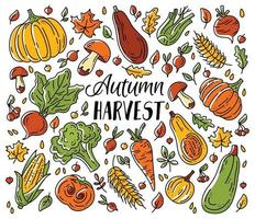 A set of vegetables and mushrooms for the autumn harvest vector