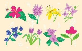 Flowers illustration set vector design