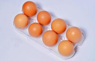 Top view multiple eggs in container photo