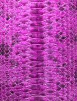 Fondo de piel de serpiente de color rosa. textura reptil foto