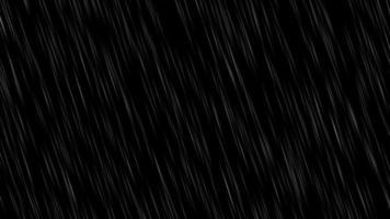 Free Rain Falling Stock Video Footage