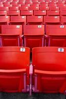 fila de sillas plegables rojas en un estadio. foto