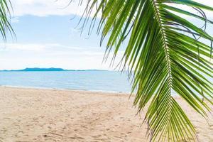 Palm y playa tropical en Pattaya en Tailandia foto