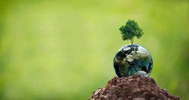 árbol de concepto de csr con globo foto