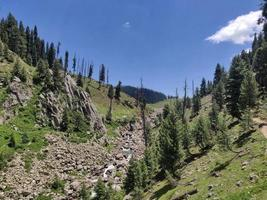 Valle de Bangus en Kupwara Cachemira foto