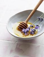 cuenco con miel y flores frescas de lavanda foto