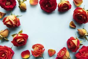 Flowers composition. Frame made of red  roses photo