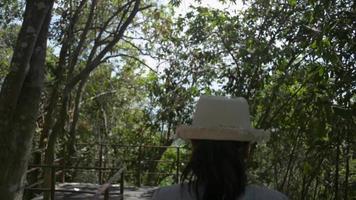 femme écologiste marchant à travers la forêt tropicale video