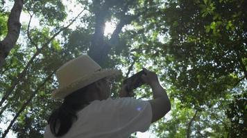femme avec un chapeau de paille prenant une photo avec un téléphone portable dans la forêt video