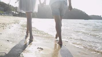 Mother and Daughter Walking Together on The Beach During Summer video
