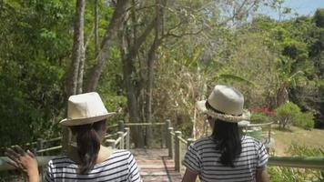 maman et fille portent des chapeaux de paille marchant sur le sentier du parc video