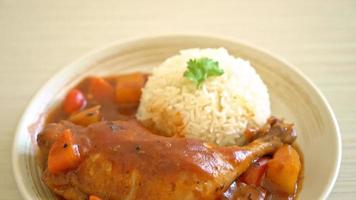 Homemade Chicken Stew with Tomato, Onions, Carrot and Rice video