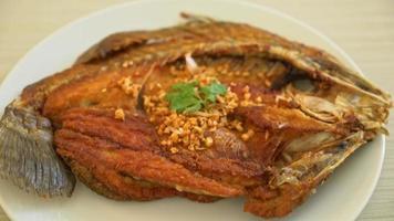 friterad havsabborre fisk med stekt vitlök video