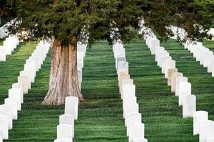 Lápidas en el cementerio de Arlington foto