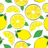 Seamless pattern lemon. Slices of citrus and leaf on white background vector