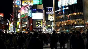 Time-lapse Shibuya District in Tokyo, Japan video