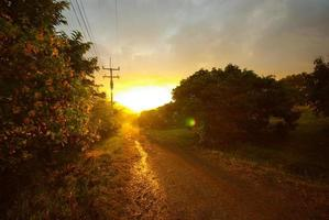 Sunlight of sunset and a dirt road in the countryside photo