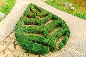 Leaf figure planted from bushes of evergreen plants in the park photo