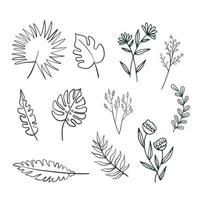 Doodle set tropical and exotic leaves silhouette vector