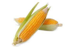 maíz dulce aislado sobre un fondo blanco foto