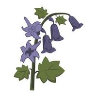 Bluebell Flower color clip art Design vector