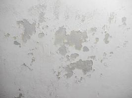 Damp moisture on ceiling photo