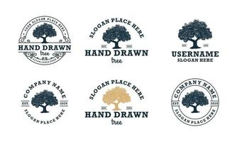 hand drawn shady tree abstract sign, symbol or logo design template vector