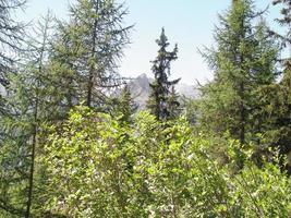 vista de las montañas de los alpes foto