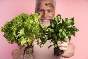 Close-up view, senior man holding fresh food - lettuce and basil photo