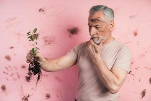 Elderly man examines the plant, he assesses whether it can be planted photo