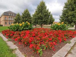 Gardens in Stuttgart Germany photo