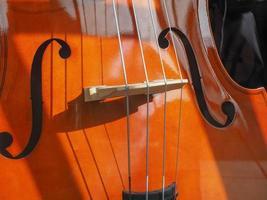 Cello stringed instrument photo
