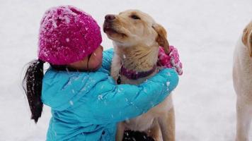 Jeune fille jouant avec un chiot dans la neige video