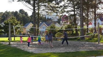 Family playing volleyball at park video