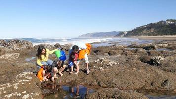 Family at beach looking at tide pool video