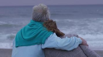 Senior couple sit at beach together video
