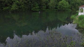 vista aérea de pescadores com mosca no lago video