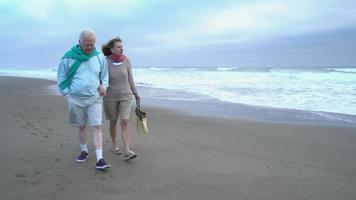 Senior couple walking on beach together video