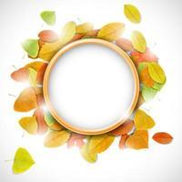 lugar para el texto con hojas de otoño vector