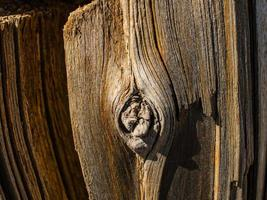 Old wood texture and Natural wood surface photo
