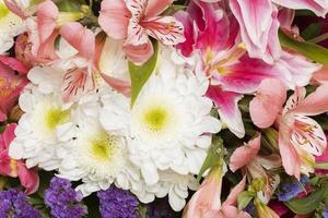 el hermoso arreglo de flores de fondo foto