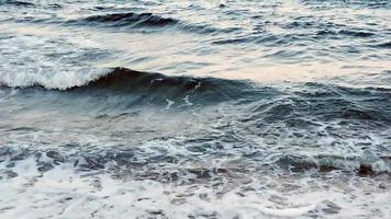 Storm and high waves in the sea in summer season. video